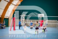 www.darioimparato.com - torneo pallavolo web-224