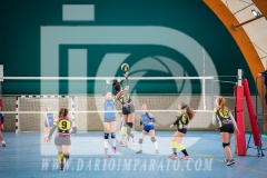 www.darioimparato.com - torneo pallavolo web-226