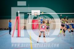 www.darioimparato.com - torneo pallavolo web-234