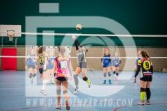 www.darioimparato.com - torneo pallavolo web-238