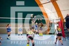 www.darioimparato.com - torneo pallavolo web-243