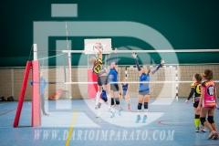 www.darioimparato.com - torneo pallavolo web-248