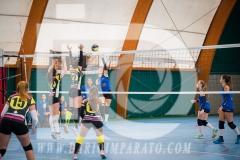 www.darioimparato.com - torneo pallavolo web-249