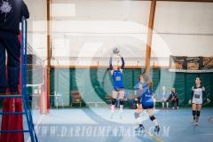 www.darioimparato.com - torneo pallavolo web-251