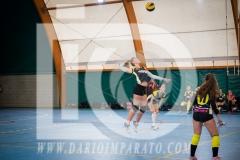 www.darioimparato.com - torneo pallavolo web-254