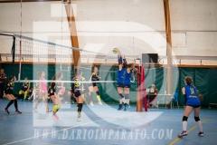 www.darioimparato.com - torneo pallavolo web-257