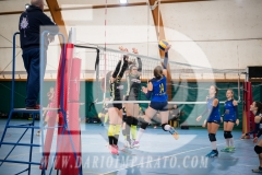 www.darioimparato.com - torneo pallavolo web-262