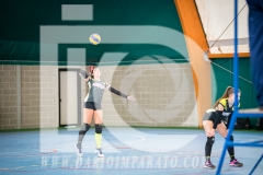 www.darioimparato.com - torneo pallavolo web-269