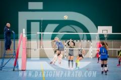 www.darioimparato.com - torneo pallavolo web-276