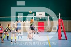 www.darioimparato.com - torneo pallavolo web-279