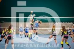 www.darioimparato.com - torneo pallavolo web-283