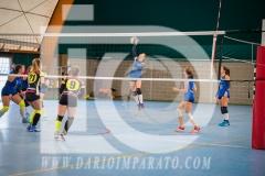 www.darioimparato.com - torneo pallavolo web-288