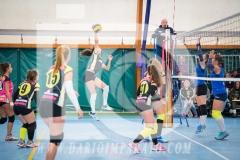 www.darioimparato.com - torneo pallavolo web-294