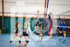 www.darioimparato.com - torneo pallavolo web-296
