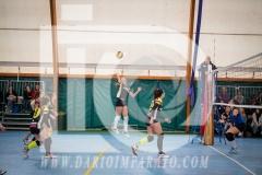 www.darioimparato.com - torneo pallavolo web-300
