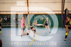 www.darioimparato.com - torneo pallavolo web-302