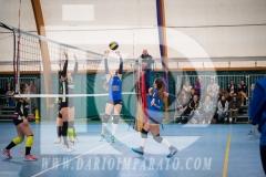www.darioimparato.com - torneo pallavolo web-304