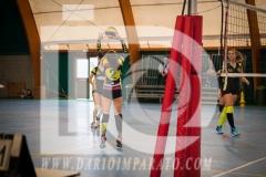 www.darioimparato.com - torneo pallavolo web-311