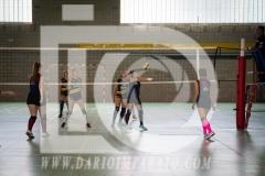 www.darioimparato.com - torneo pallavolo web-316