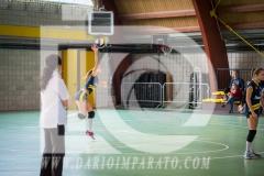 www.darioimparato.com - torneo pallavolo web-317