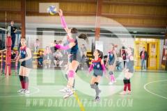 www.darioimparato.com - torneo pallavolo web-318