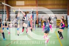 www.darioimparato.com - torneo pallavolo web-320