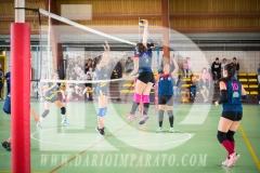 www.darioimparato.com - torneo pallavolo web-325