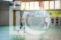 www.darioimparato.com - torneo pallavolo web-329