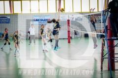 www.darioimparato.com - torneo pallavolo web-334