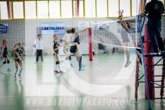 www.darioimparato.com - torneo pallavolo web-335