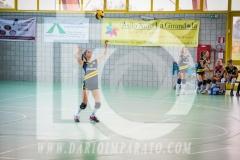 www.darioimparato.com - torneo pallavolo web-336