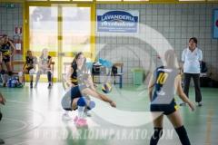 www.darioimparato.com - torneo pallavolo web-340