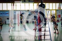 www.darioimparato.com - torneo pallavolo web-341