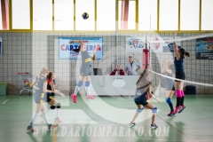 www.darioimparato.com - torneo pallavolo web-347