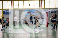 www.darioimparato.com - torneo pallavolo web-349