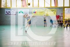 www.darioimparato.com - torneo pallavolo web-350
