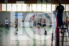 www.darioimparato.com - torneo pallavolo web-355