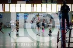 www.darioimparato.com - torneo pallavolo web-356