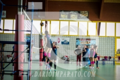 www.darioimparato.com - torneo pallavolo web-366