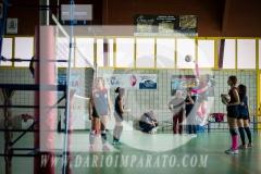 www.darioimparato.com - torneo pallavolo web-369