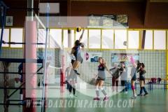 www.darioimparato.com - torneo pallavolo web-370