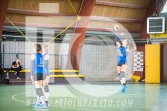 www.darioimparato.com - torneo pallavolo web-389