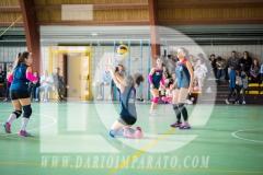 www.darioimparato.com - torneo pallavolo web-393