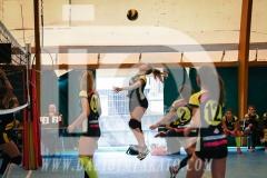 www.darioimparato.com - torneo pallavolo web-396