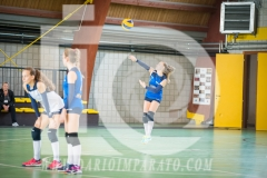 www.darioimparato.com - torneo pallavolo web-398