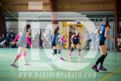 www.darioimparato.com - torneo pallavolo web-404