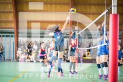 www.darioimparato.com - torneo pallavolo web-406