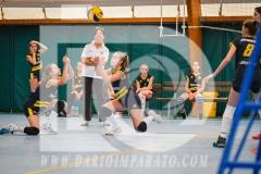 www.darioimparato.com - torneo pallavolo web-408