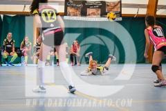 www.darioimparato.com - torneo pallavolo web-410