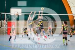 www.darioimparato.com - torneo pallavolo web-415